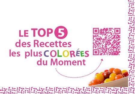 Tomates-petits-fruits-idyl-12IdeesEntete