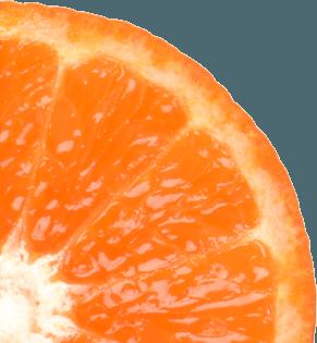 Photo d'une mandarine découpée